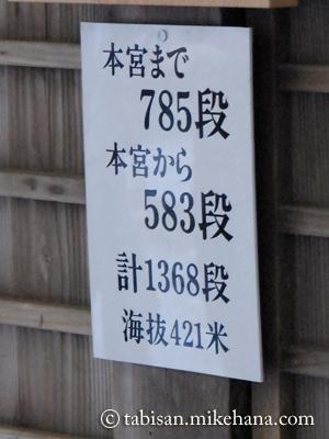 131123010