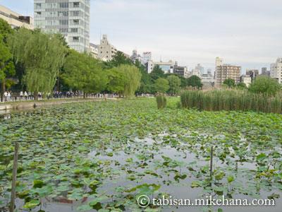 東京⑤ 寛永寺を後に、上野恩賜公園を・・・