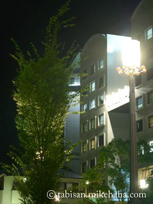 ホテルに戻る途中の街路樹に街頭の灯が裏側からあたって・・・