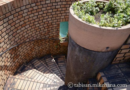 福岡市植物園 その2