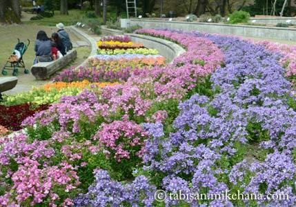 福岡市植物園 その3