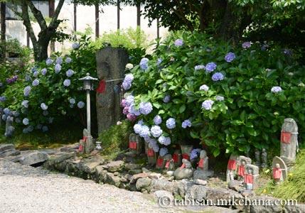 大和郡山のあじさい寺…矢田寺へ・・・