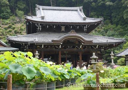 雨を気にしながら三室戸寺へ・・・