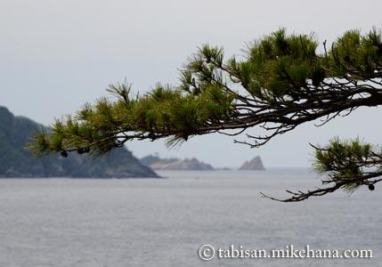 久しぶりに青海島の海岸沿いを・・・
